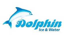 Dolphin Ice